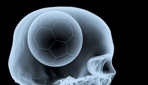 Soccer Ball Brain